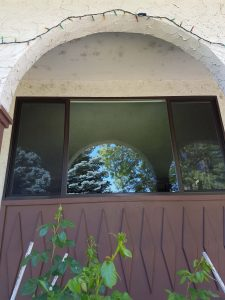 big window project west kelowna